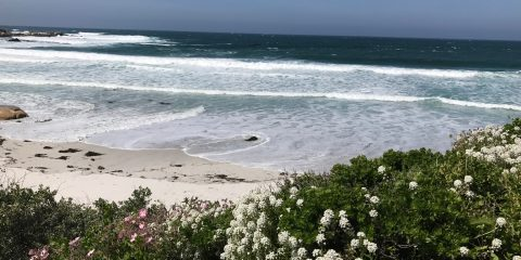 visit Carmel, Carmel by the sea